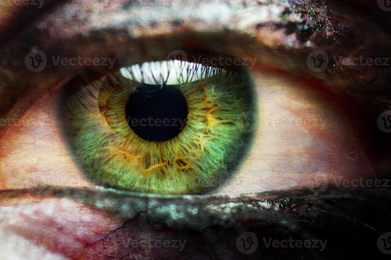 Close up green eye vampire female photo