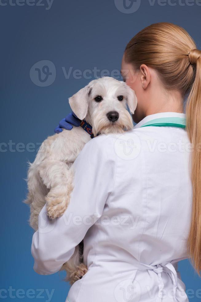 Hermosa mujer veterinario con lindo perro foto