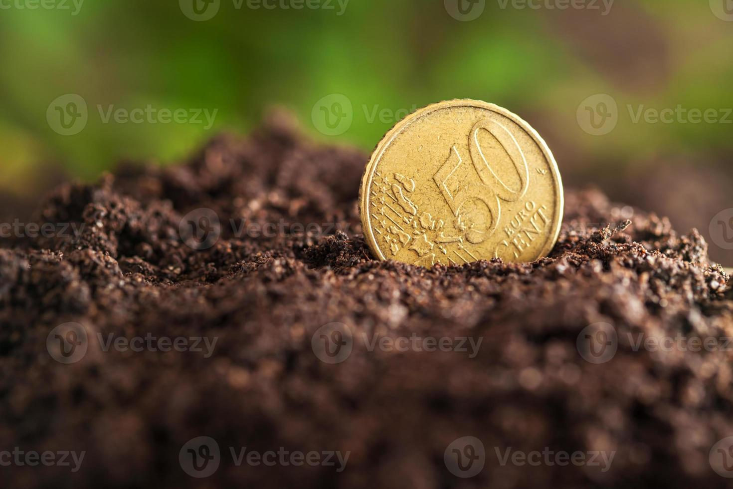 Money growth. photo