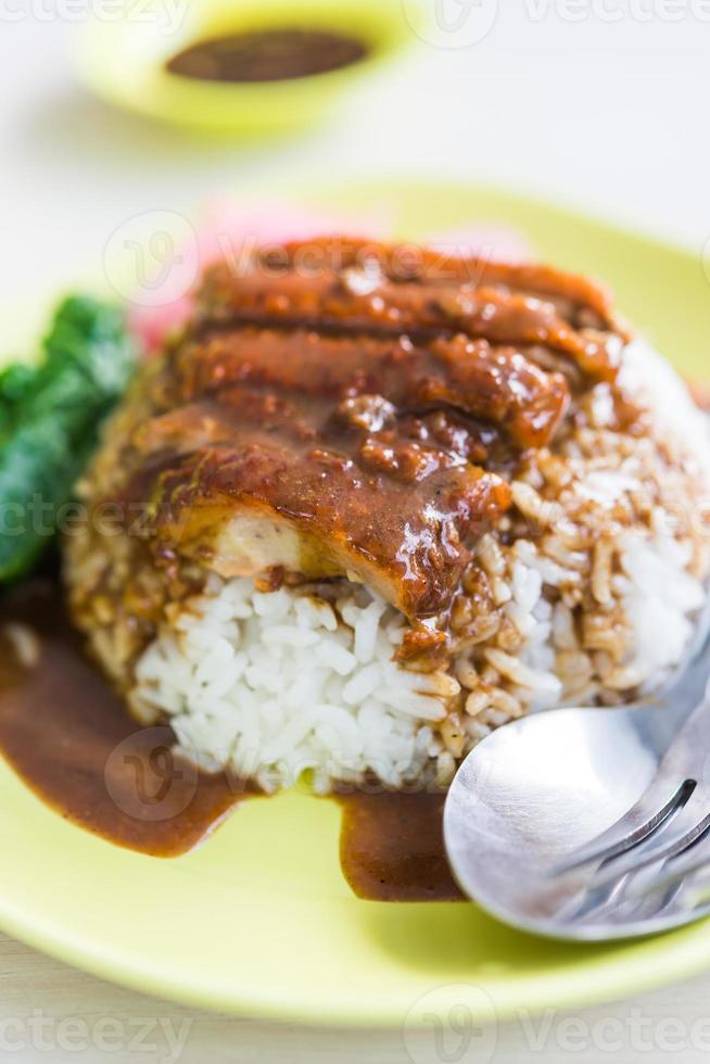 Rice roasted duck with sauce photo