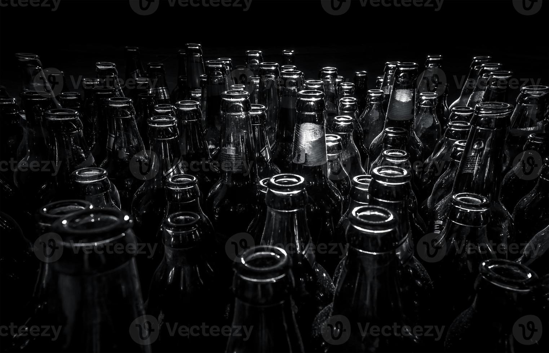 beer bottles photo