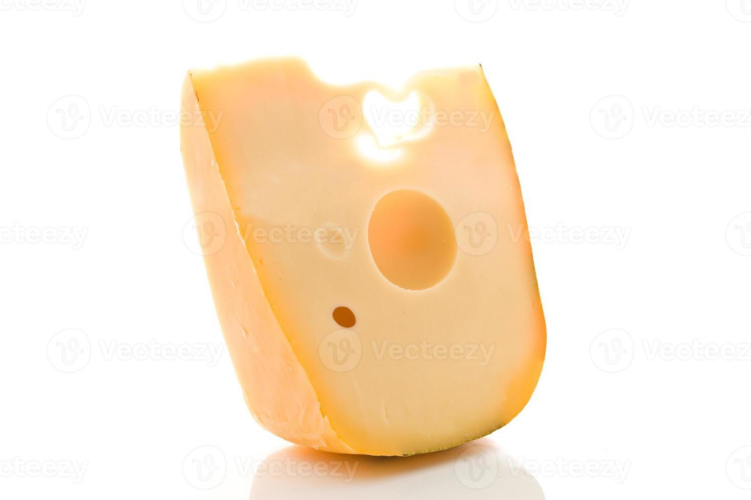 queso suizo foto