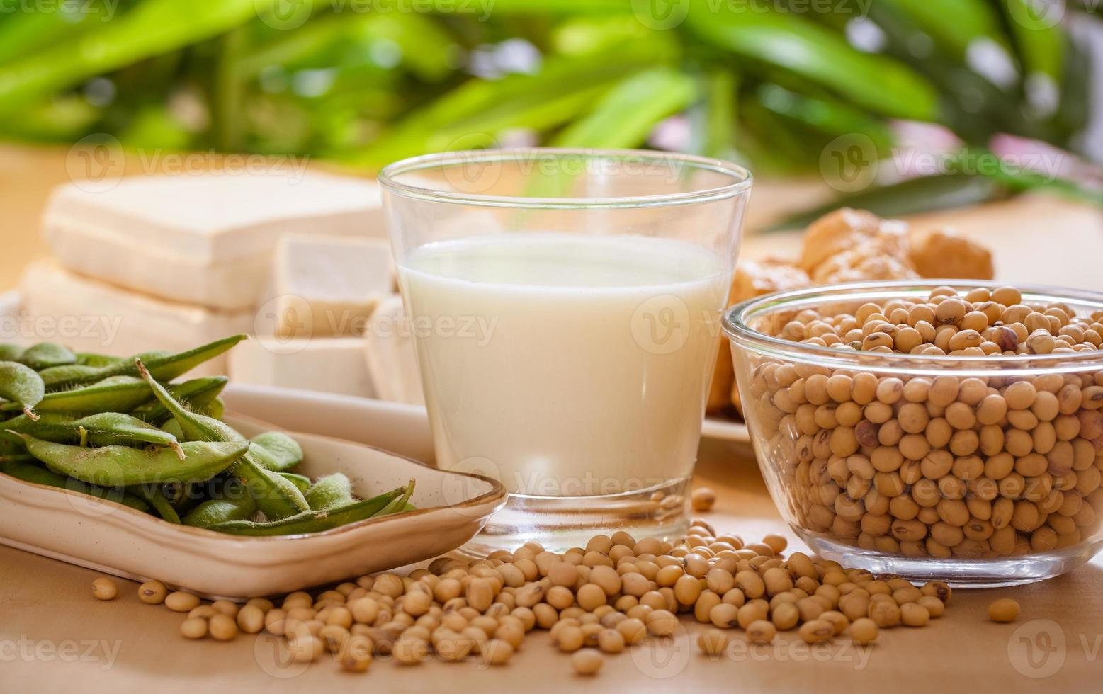 Soy products photo
