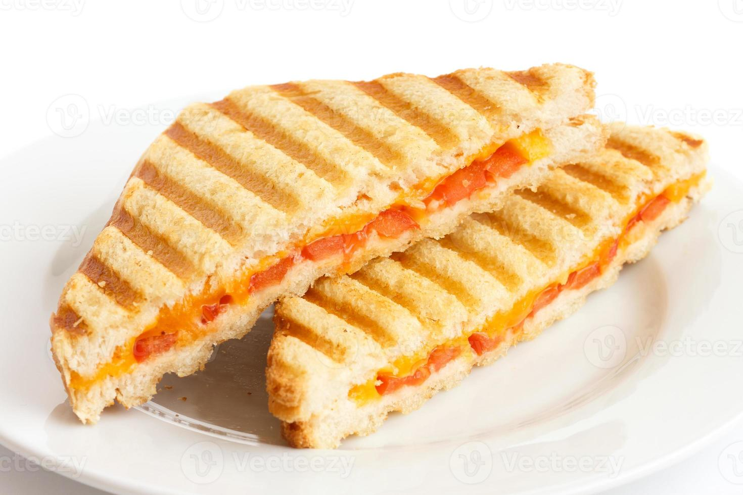 Classic tomato and cheese toasted sandwich on white plate. photo