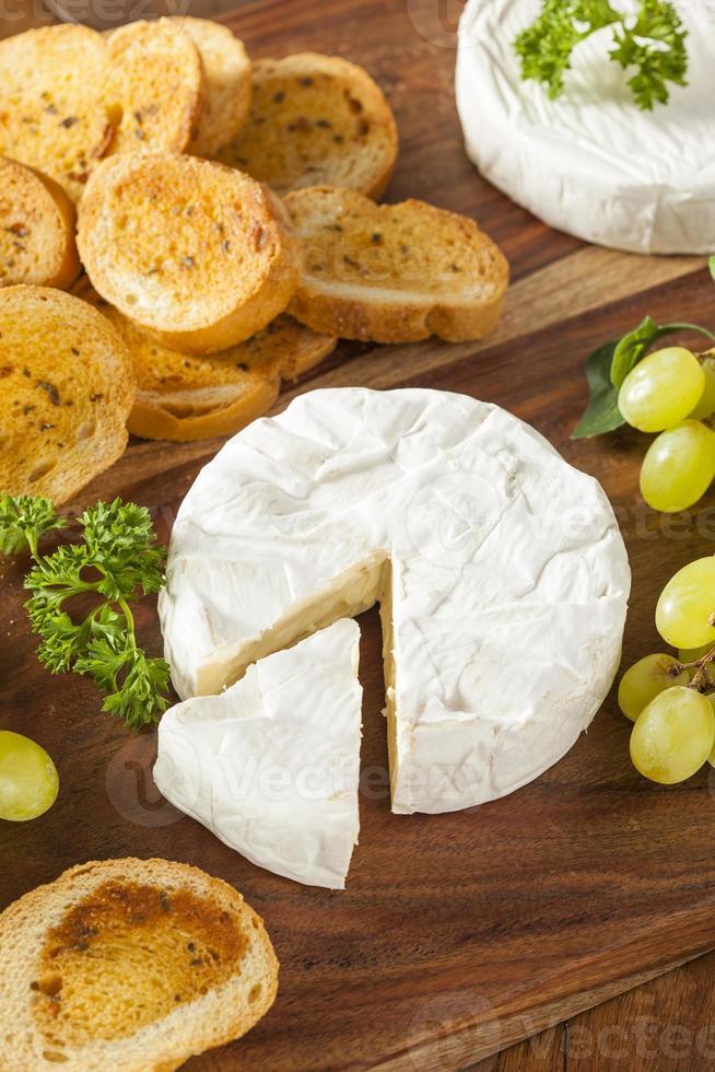 Organic Homemade White Brie Cheese photo