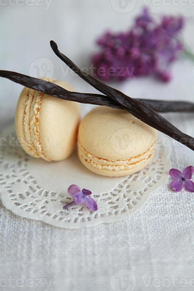 Colorful macaroons photo