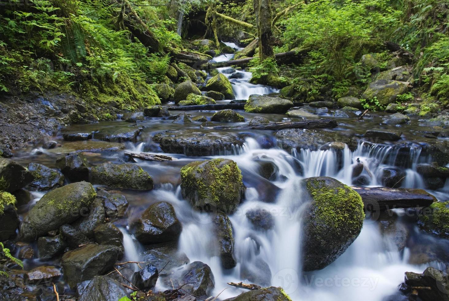 agua hermosa foto