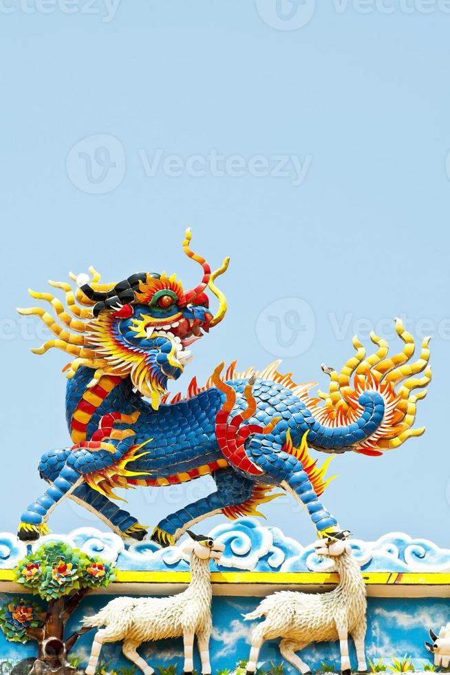 Chinese lion photo