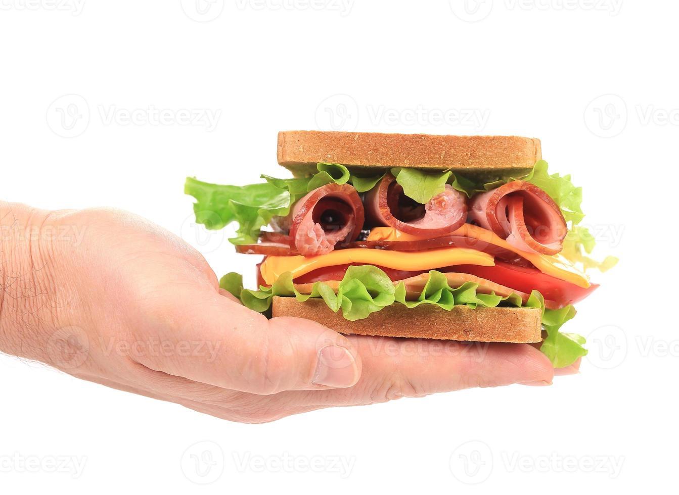 Big fresh sandwich in hands. photo