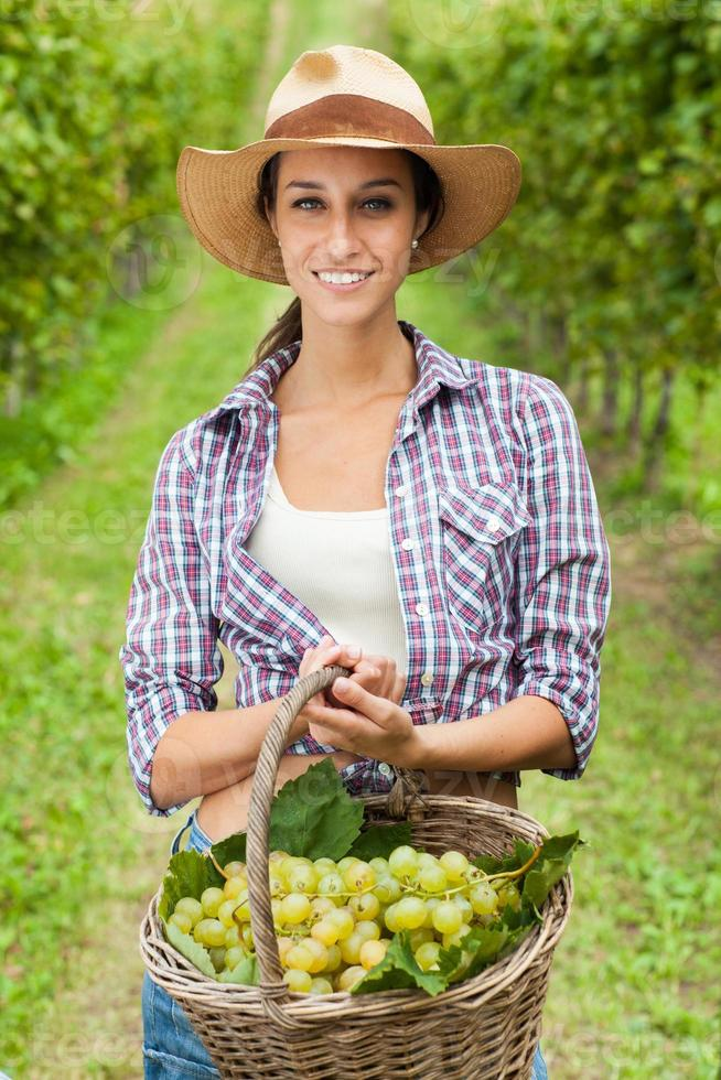 Young woman holding grapes in a vineyard photo