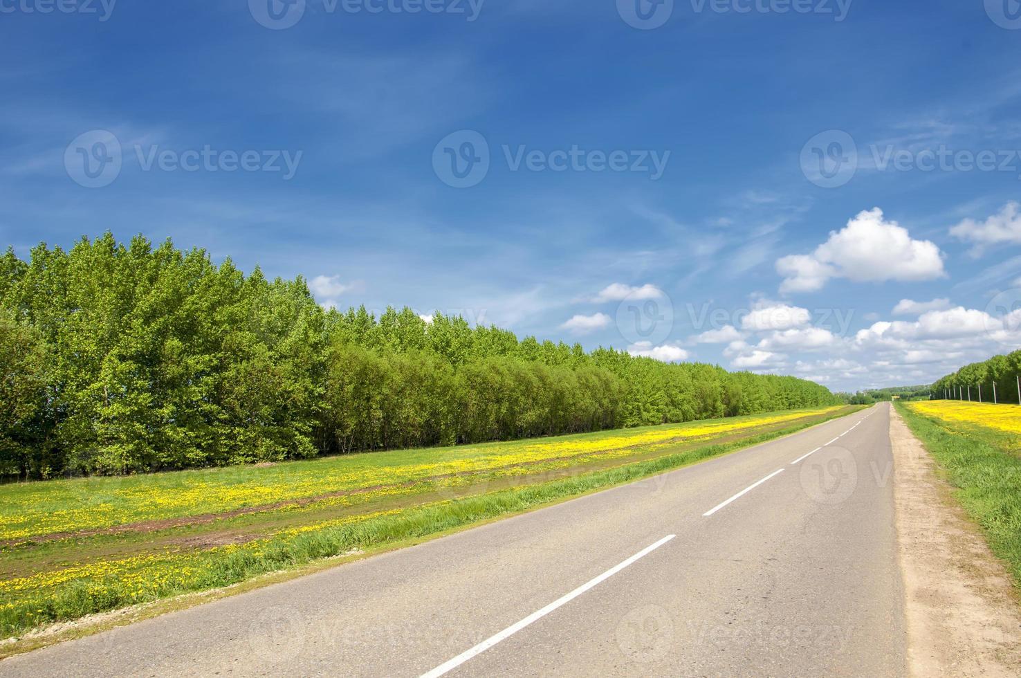 camino rural. camino en otoño foto