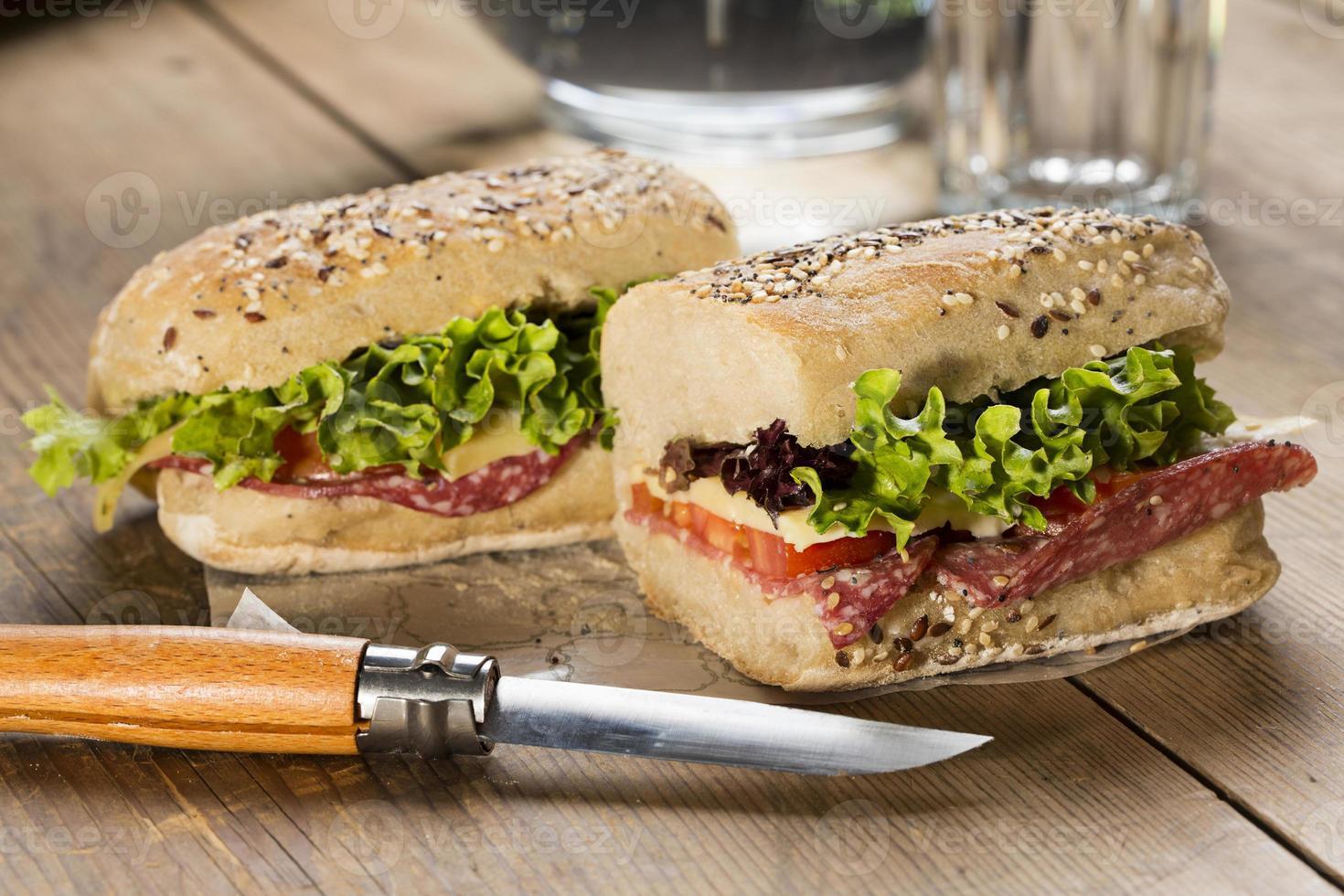 Healthy Sandwich_03 photo