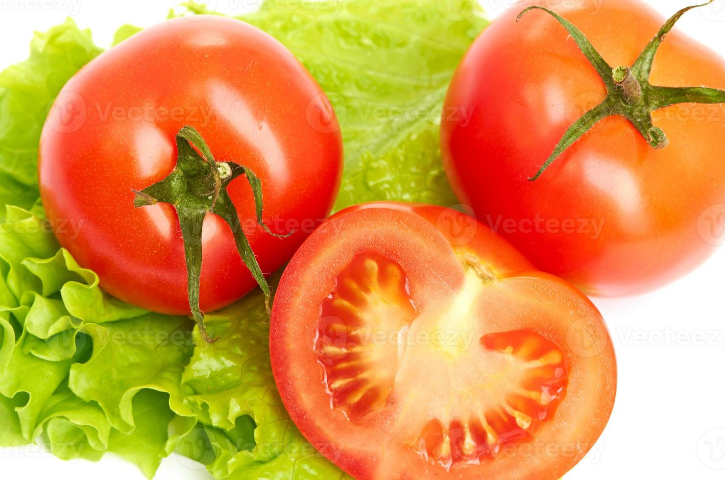Tomato vegetable and lettuce salad photo