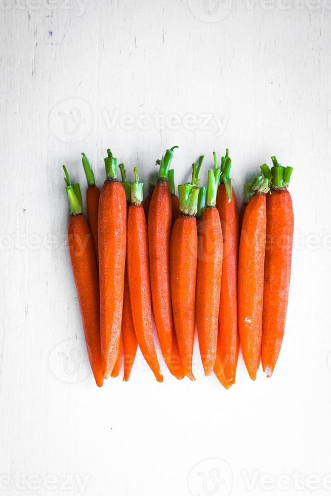zanahorias criadas en granja foto
