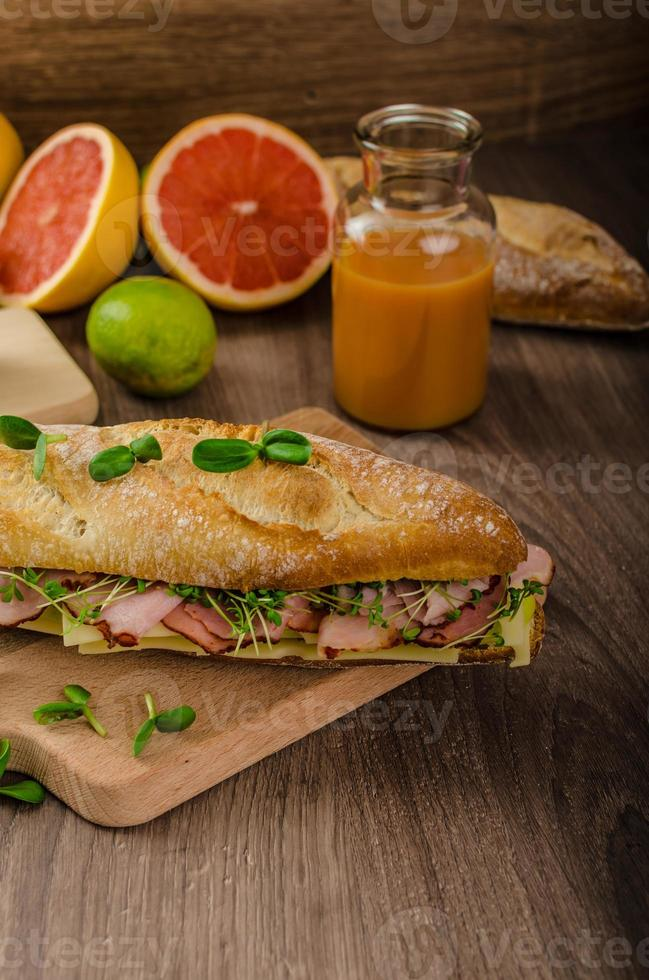Rustic baguettes with smoked rump photo