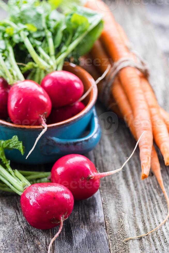Fresh Radishes and Carrots photo