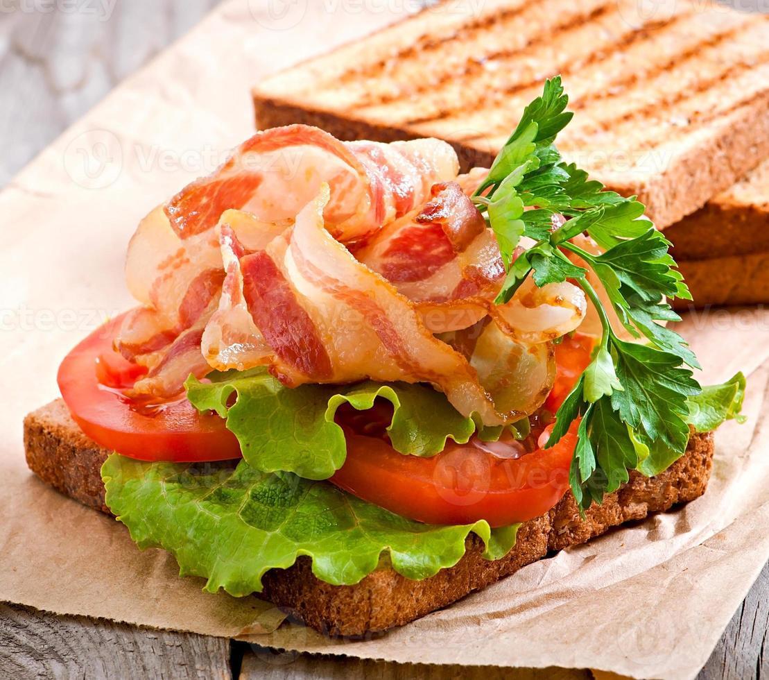 hot big sandwich photo