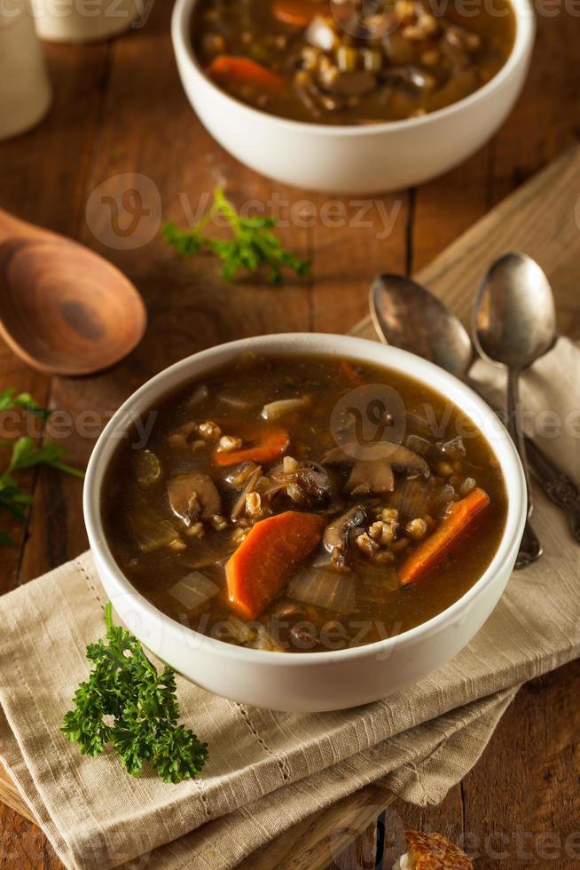 Homemade Mushroom Barley Soup photo
