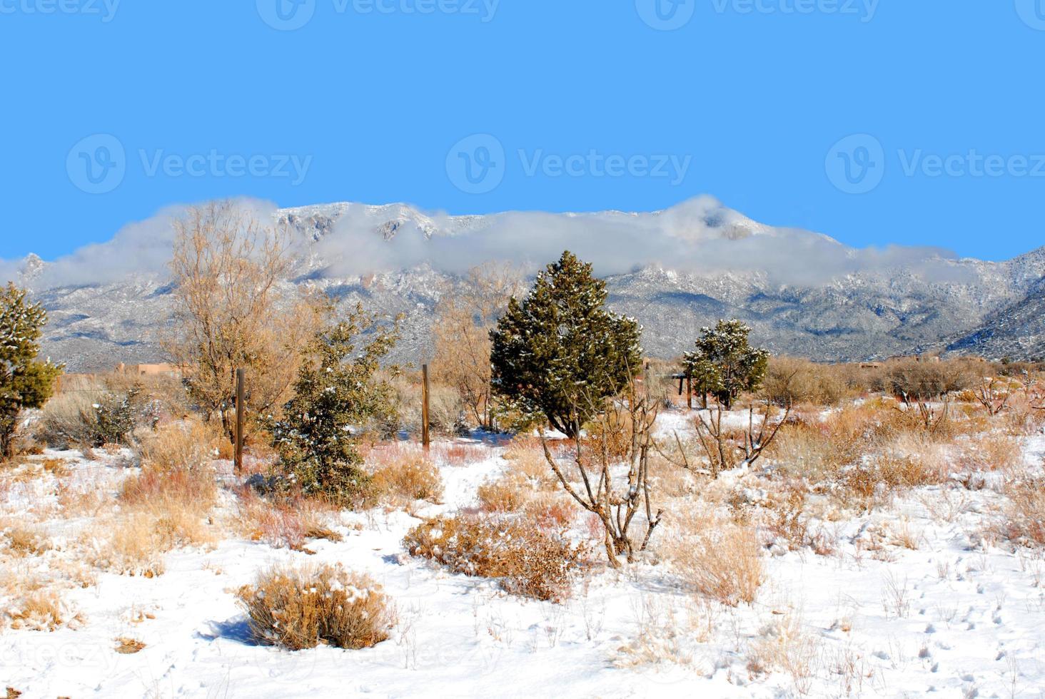 Snow on the Sandias photo
