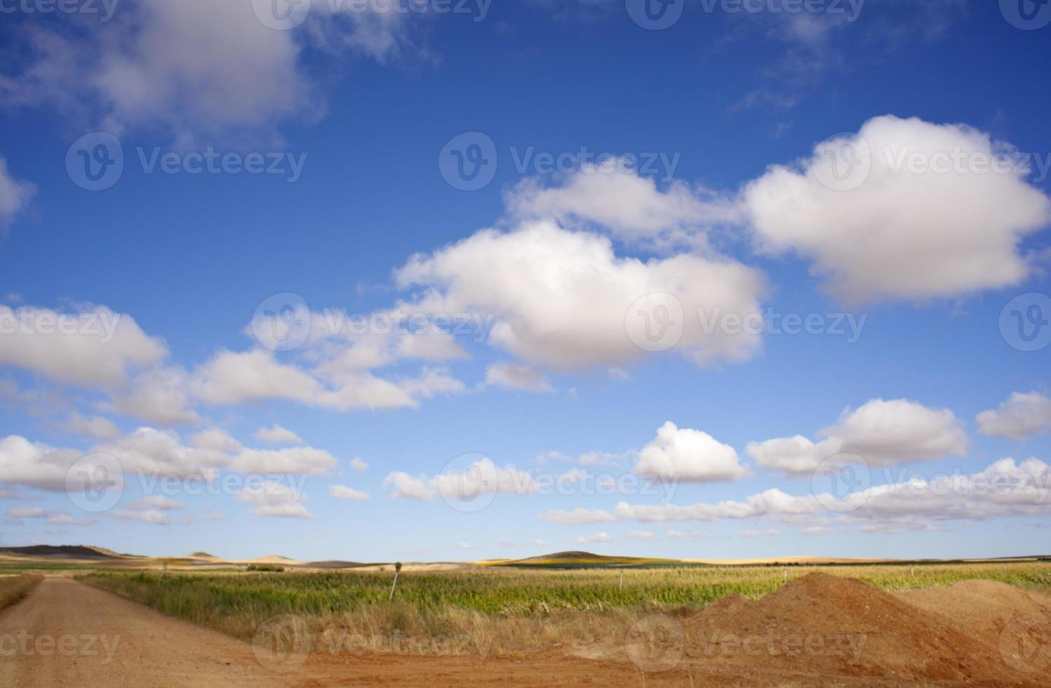 campo español foto