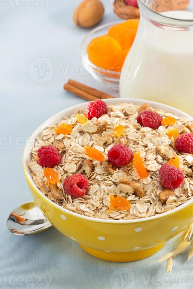 bowl of cereals muesli photo