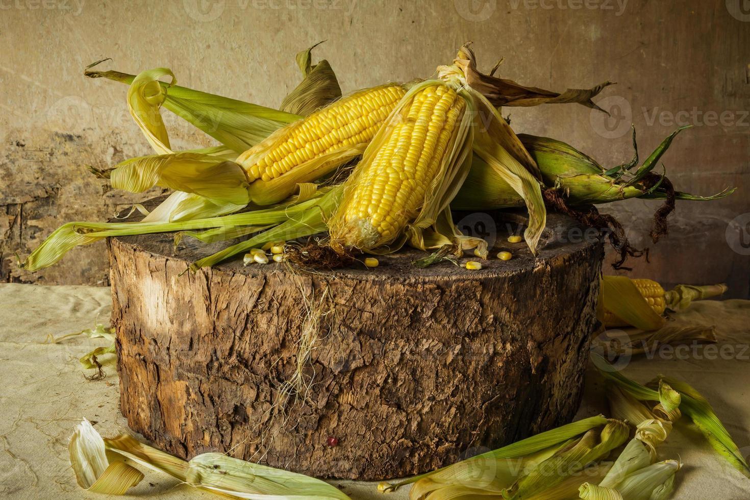 Still life with corn photo
