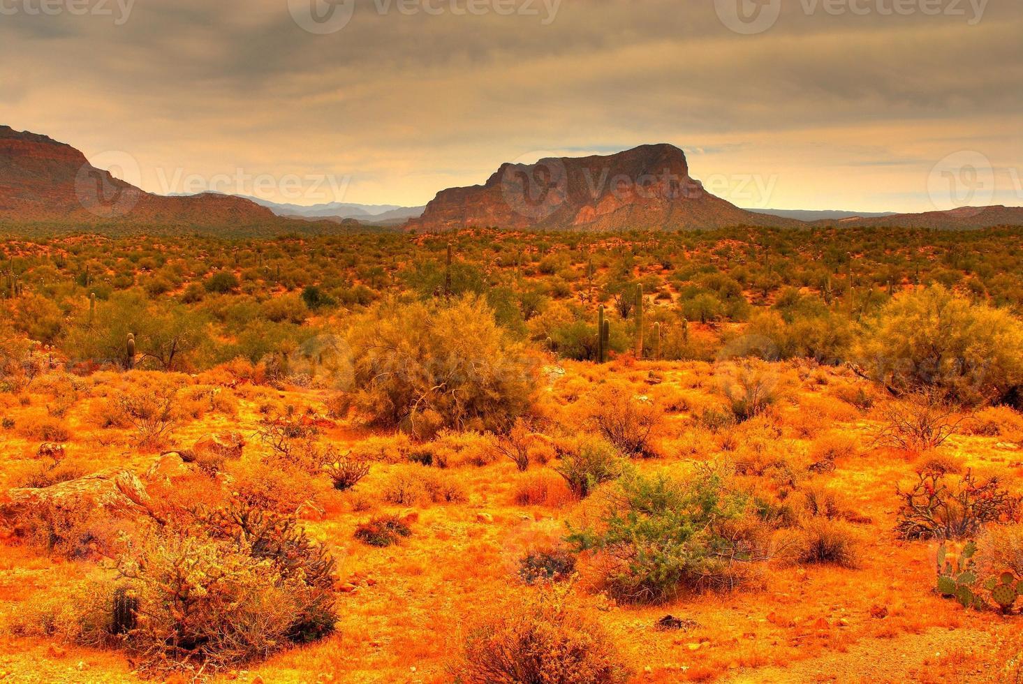 tormenta del desierto se acerca foto