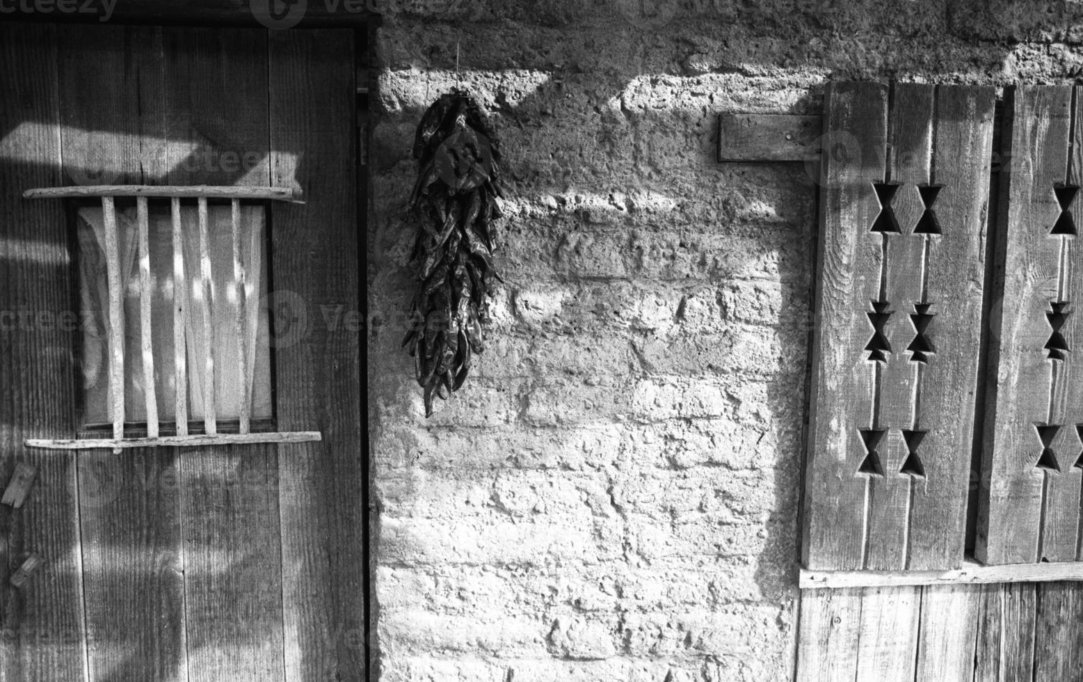 chiles rojos colgando en la sombra foto