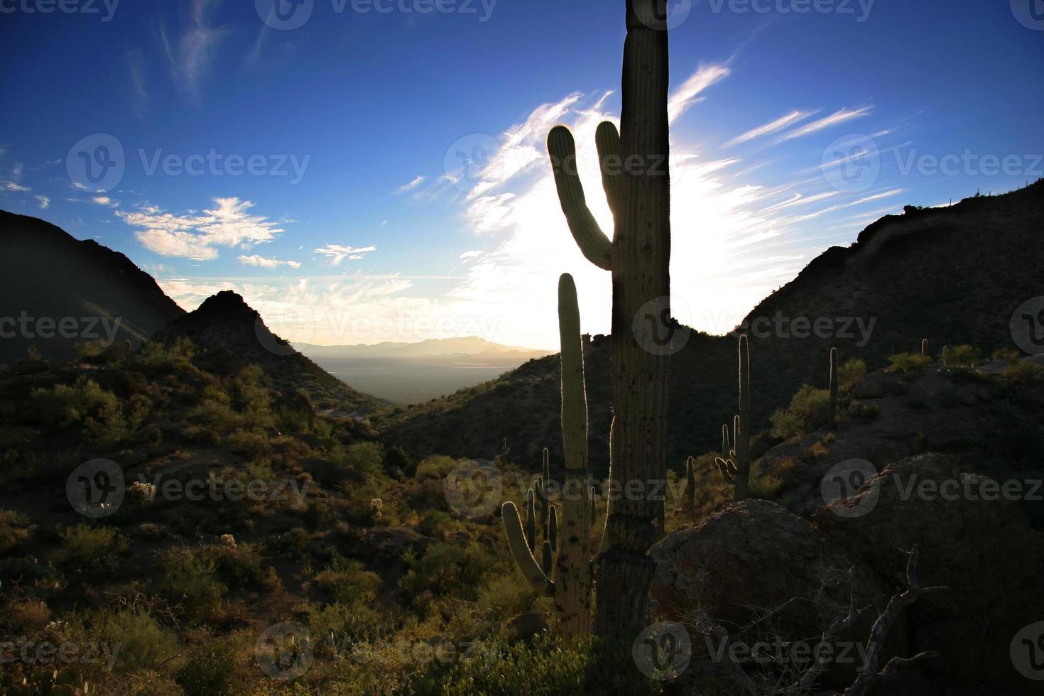puesta de sol del desierto foto