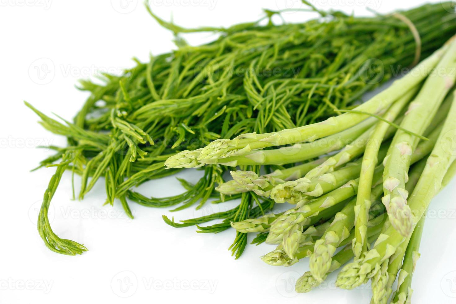 vegetables. photo