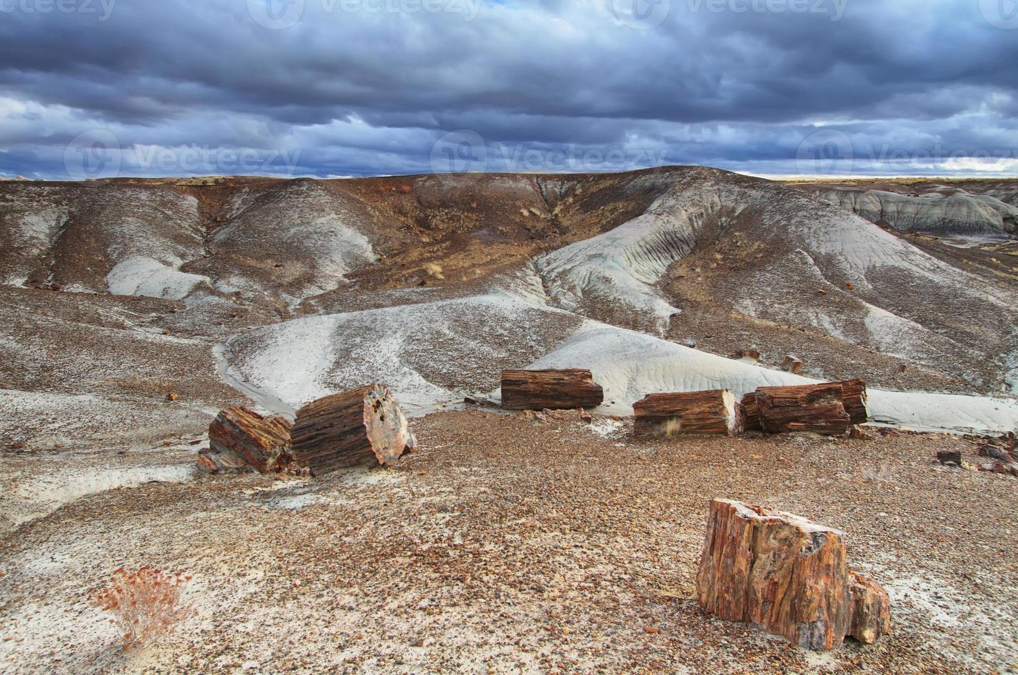 Blue Mesa, Petrified Forest National Park, photo