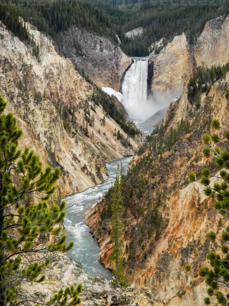 River Foil photo