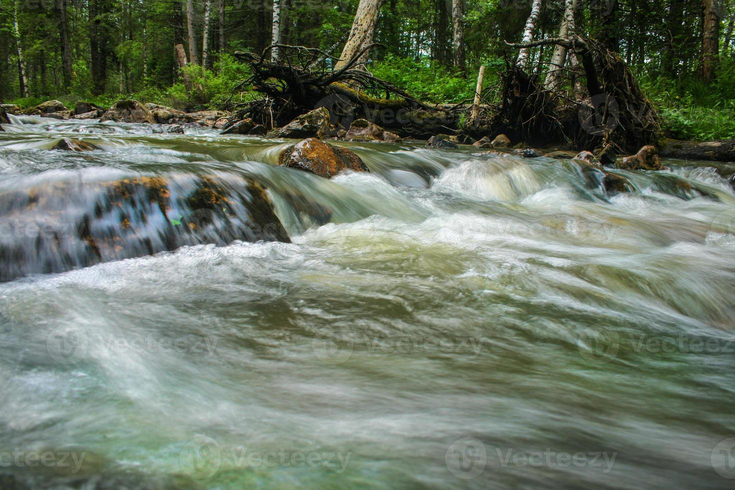 río en madera foto