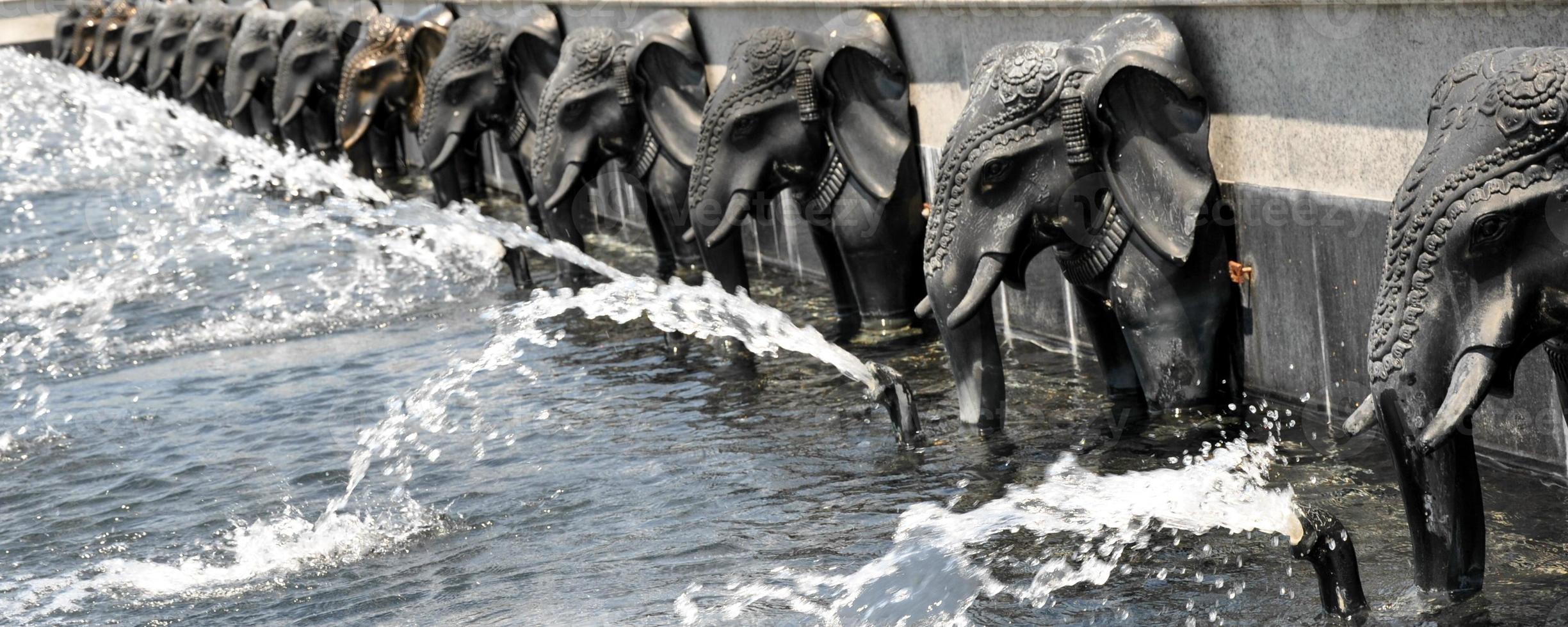 Elephant Ornamet. Close Up. photo