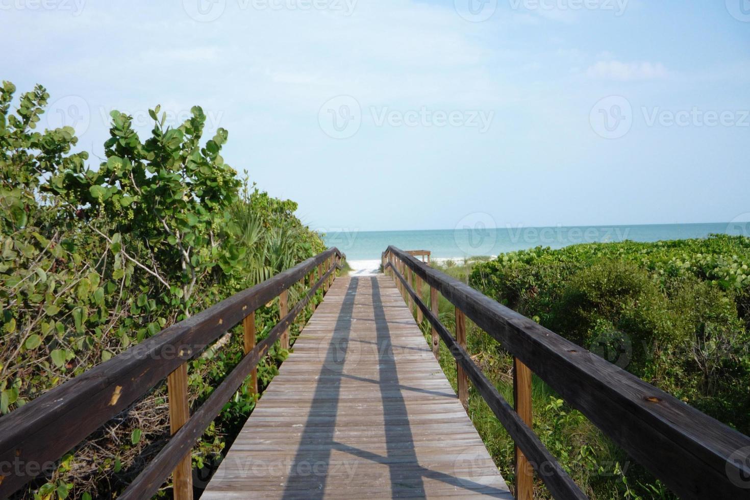 Walkway to the beach photo