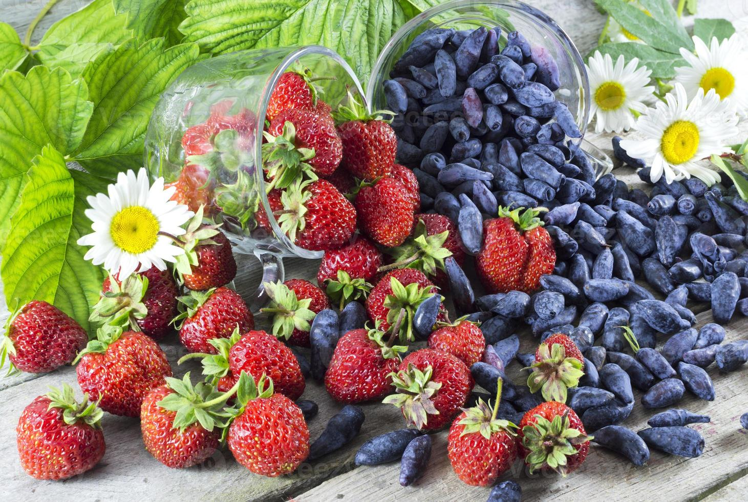 Summer berries photo