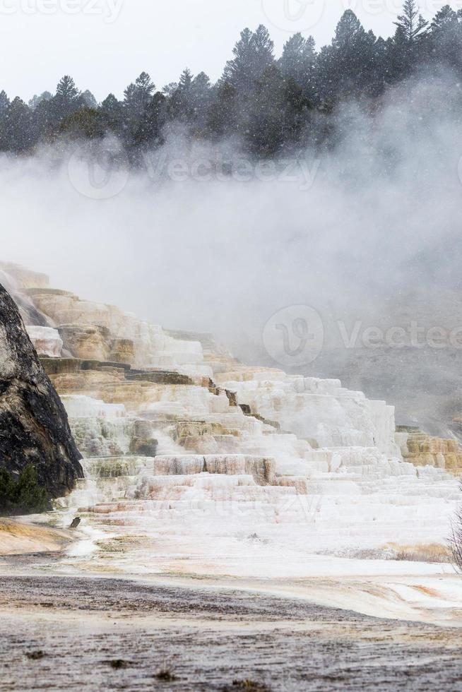 Mammoth Hot Spring Terraces photo
