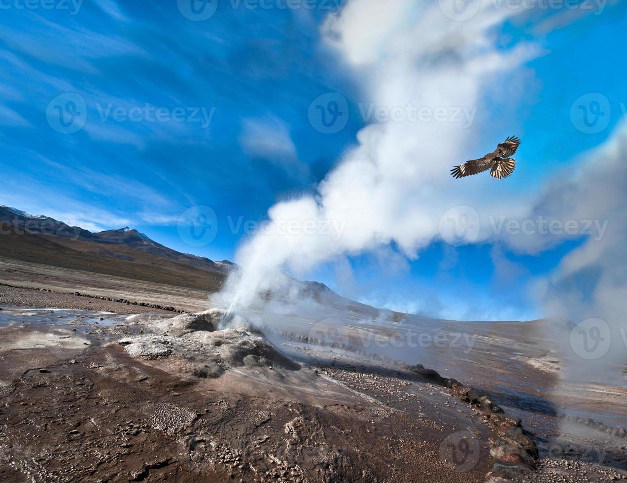Chile. valle de géiseres en el desierto de atacama foto