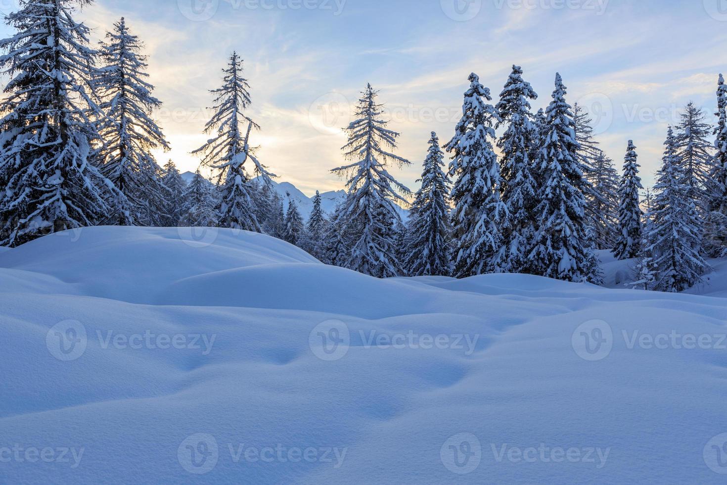 Winter landscape photo