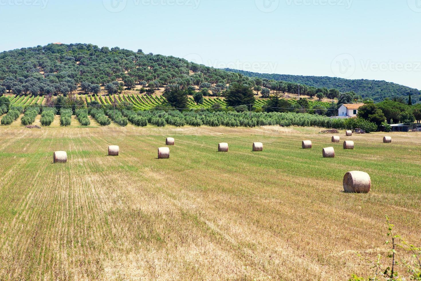 Tuscan village landscape photo