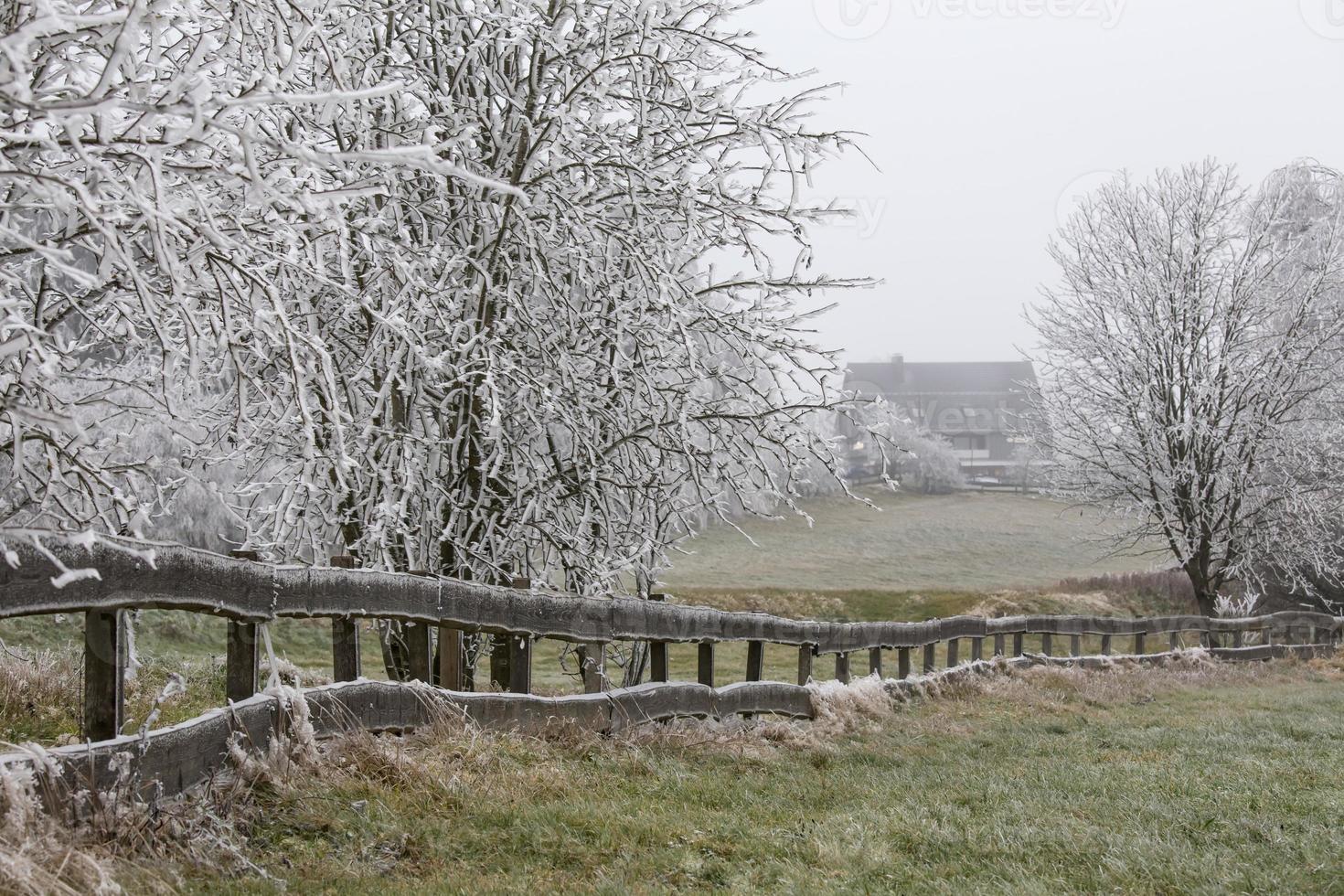 paisaje de invierno de escarcha foto