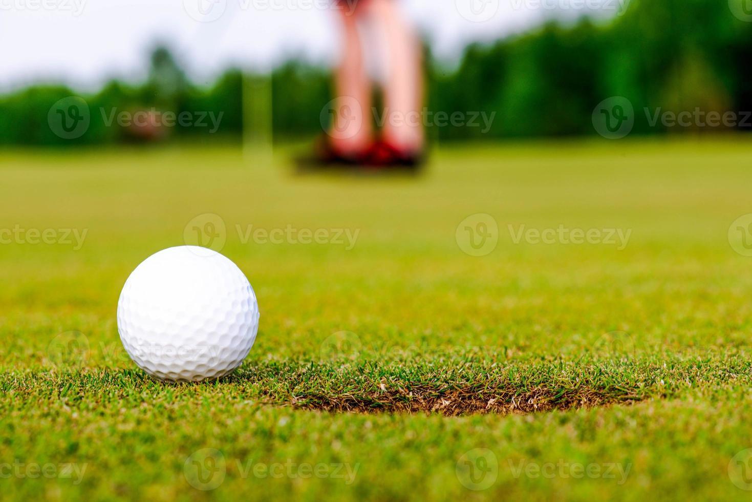 golf course landscape photo