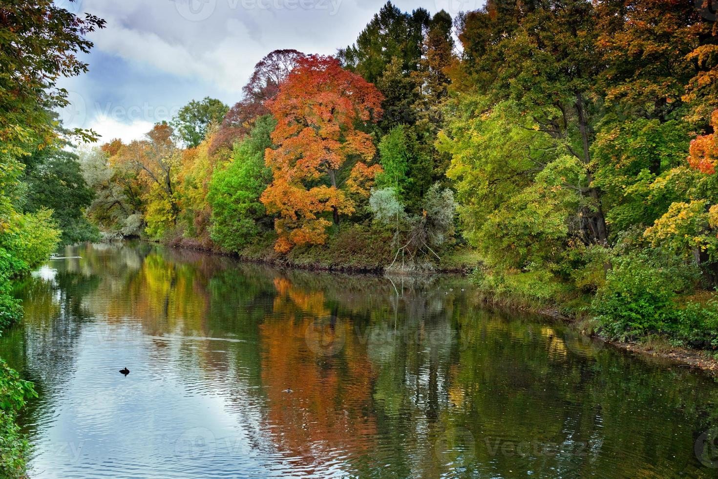 bright autumn landscape photo