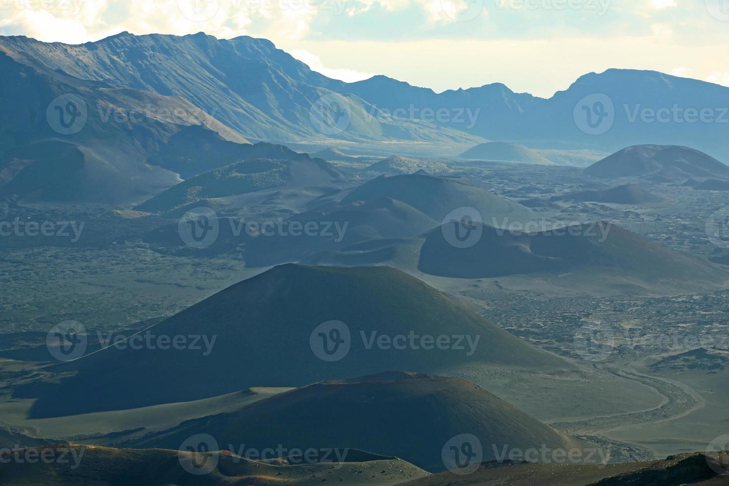 Landscape with cones photo