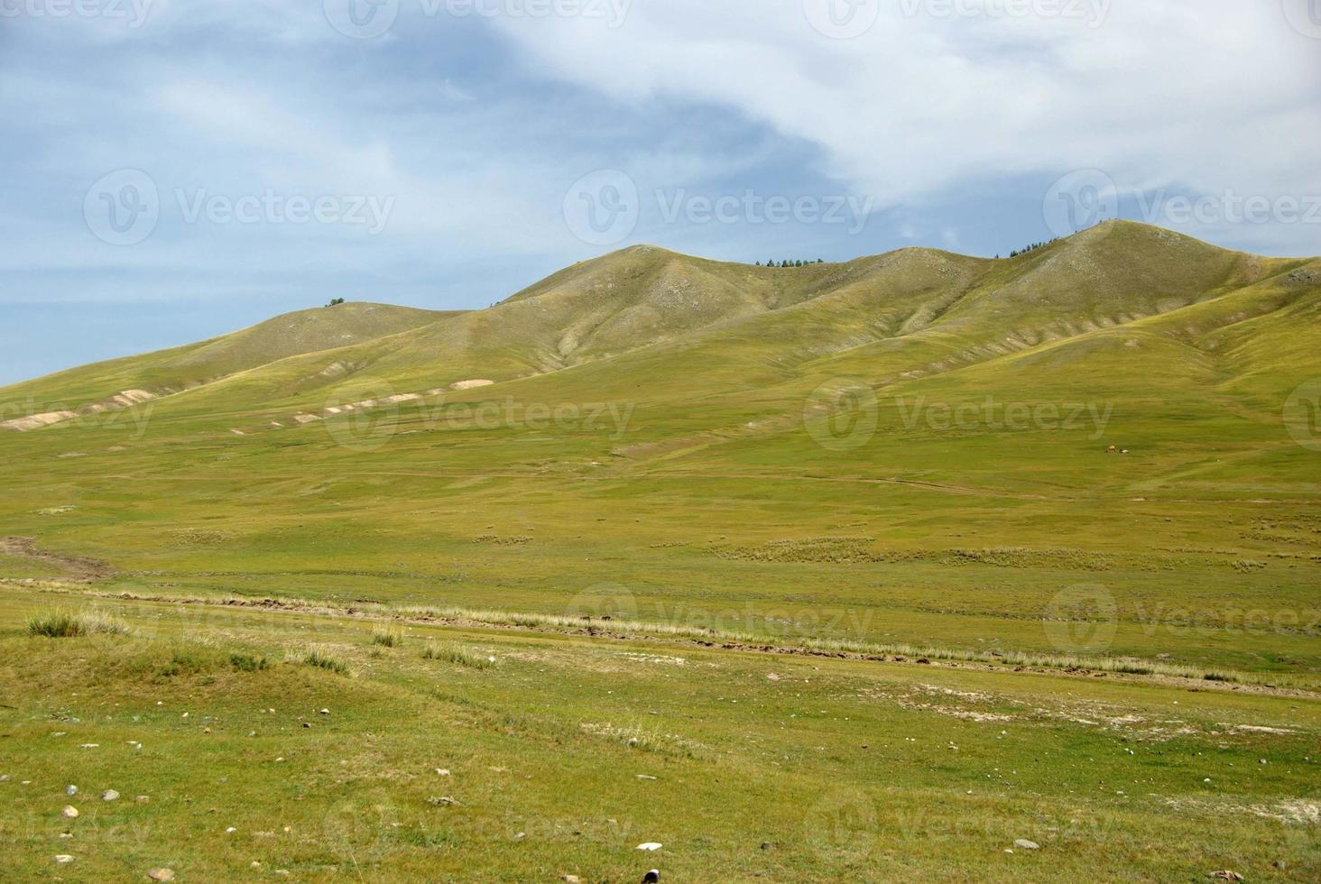 Landscape in Mongolia photo