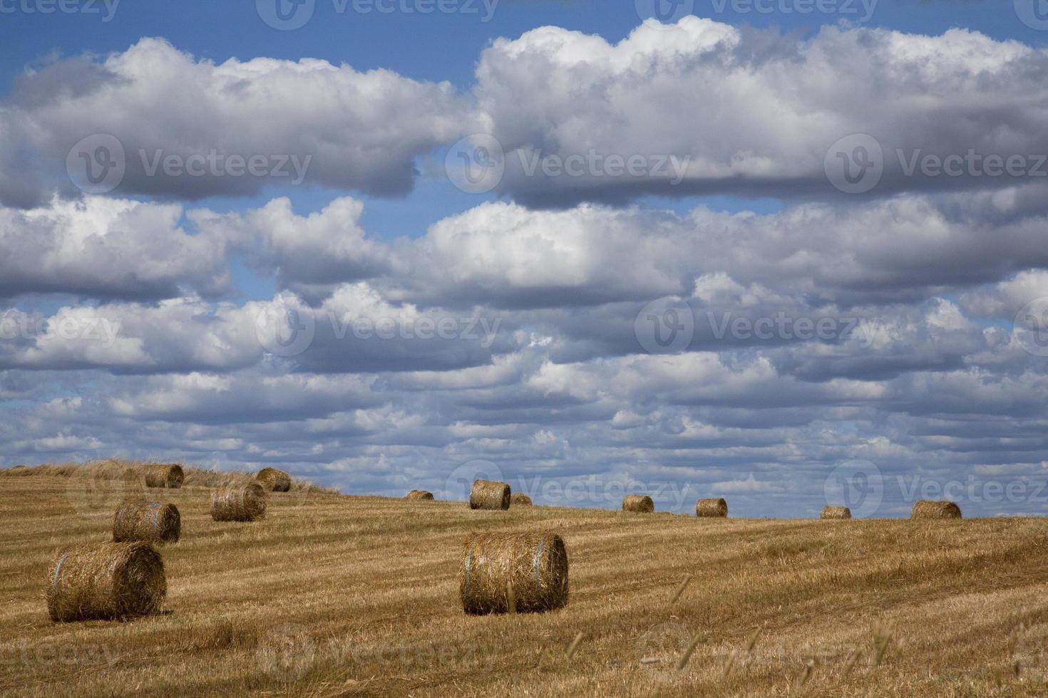 paisaje de cosecha con nubes foto