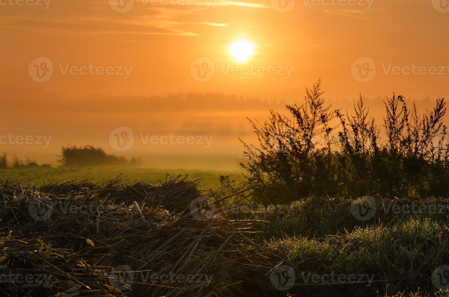 paisaje de campo temprano en la mañana. foto