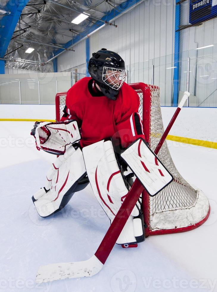 Ice hockey goalie photo