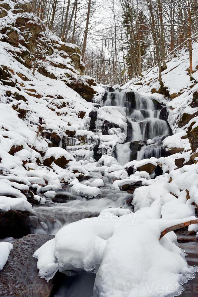 Winter landscape with the river photo