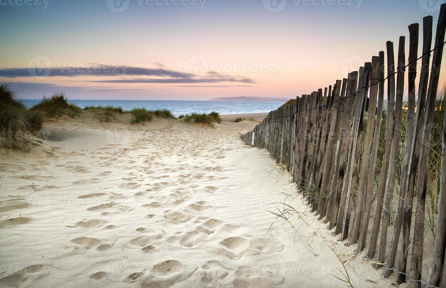 paisaje de dunas de arena cubierta de hierba al amanecer foto